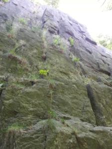 Cesta Čochtanův pilíř v Budově