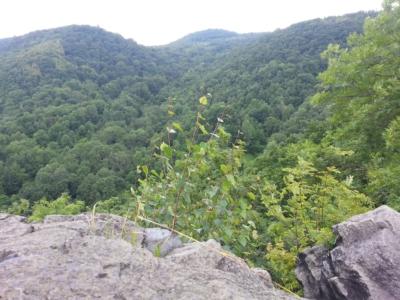 Pohled z jižního vrcholu na Babě