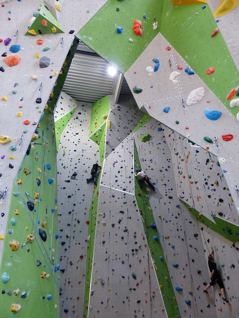 lezecká stěna