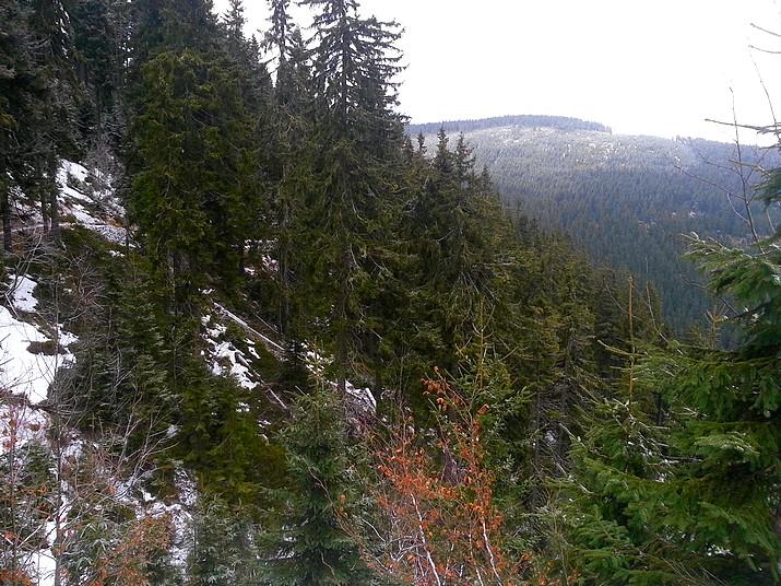 Výhled z cesty na Černou horu