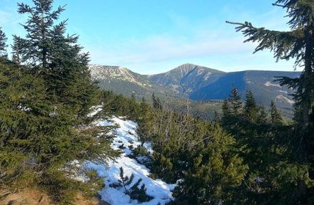 Sněžka a Studniční hora