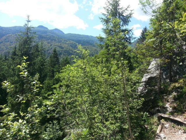 Výhled z lezecké oblasti Bohinj