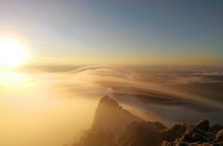 Ranní mlha vane přes kopce na vrcholu Hikurangi