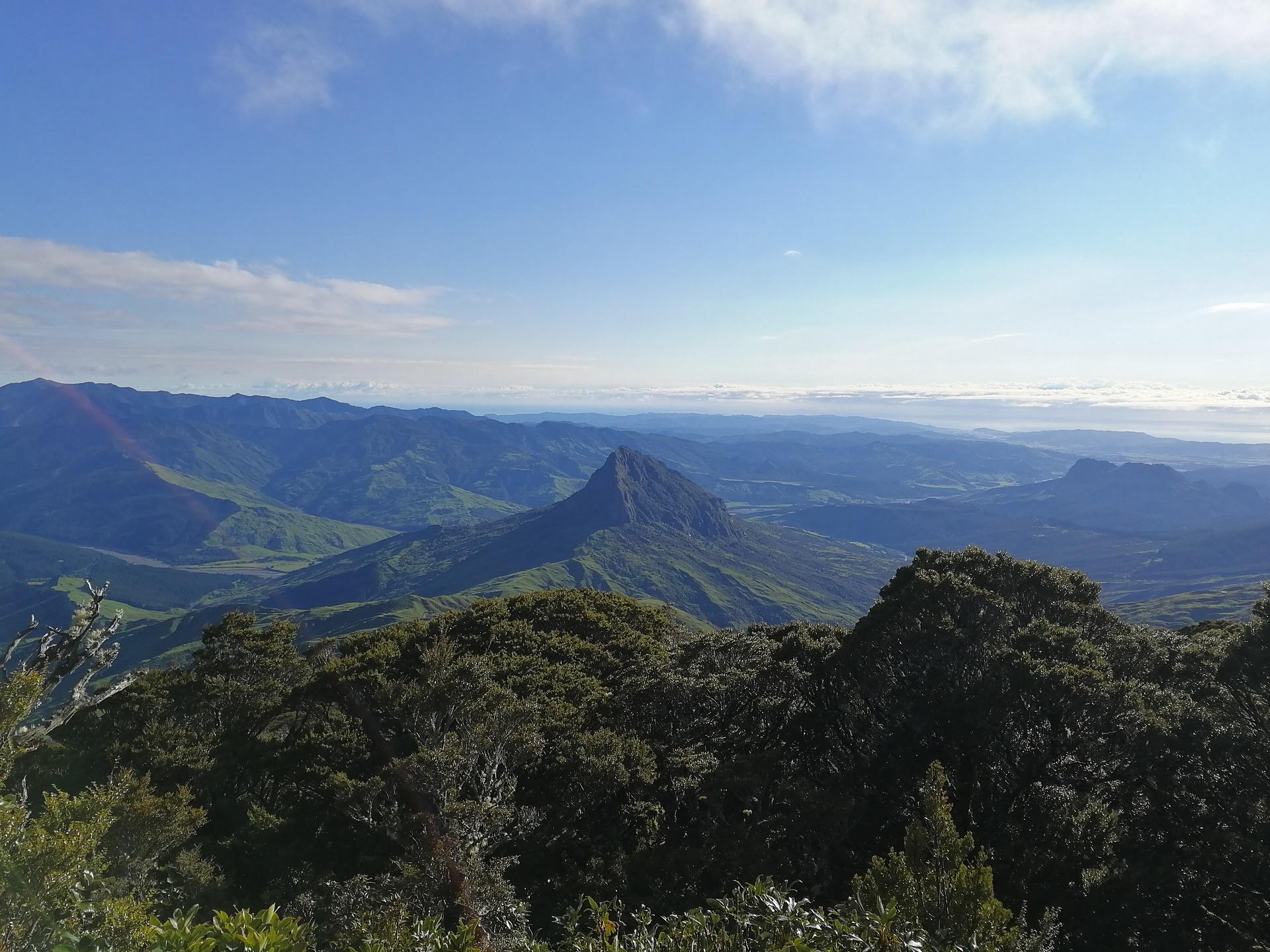 Otevřené novozélandské údolí při sestupu z hory Hikurangi