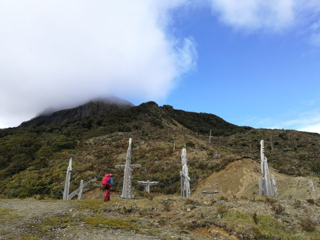 Maorské totemy pod horou Hikurangi zahalenou v mlze
