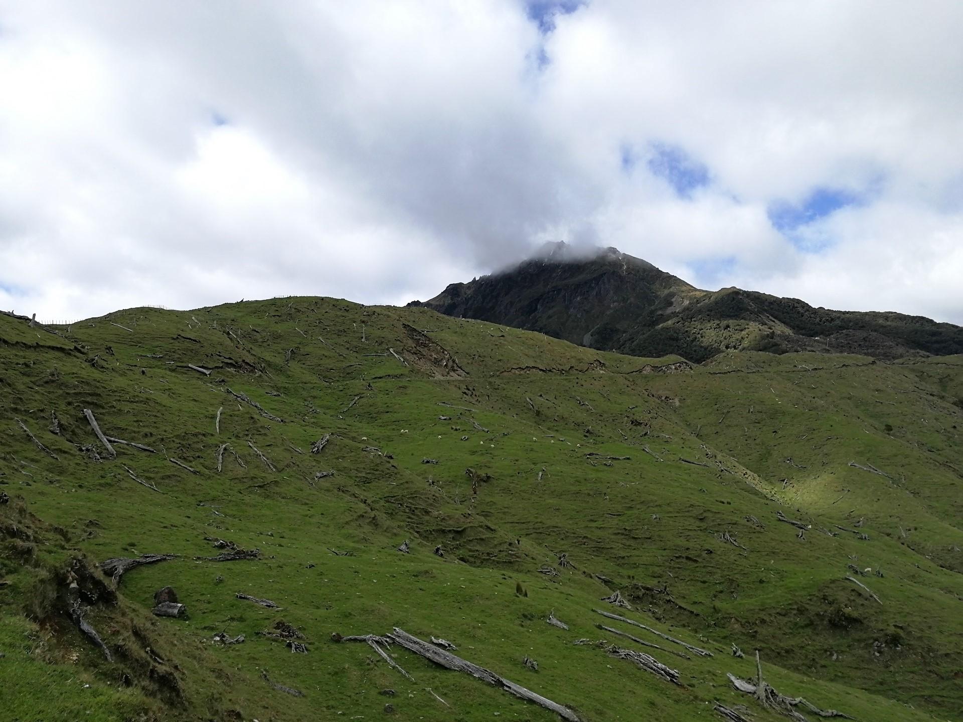 Pod vrcholem hory Hikurangi, který je zahalen v mlze