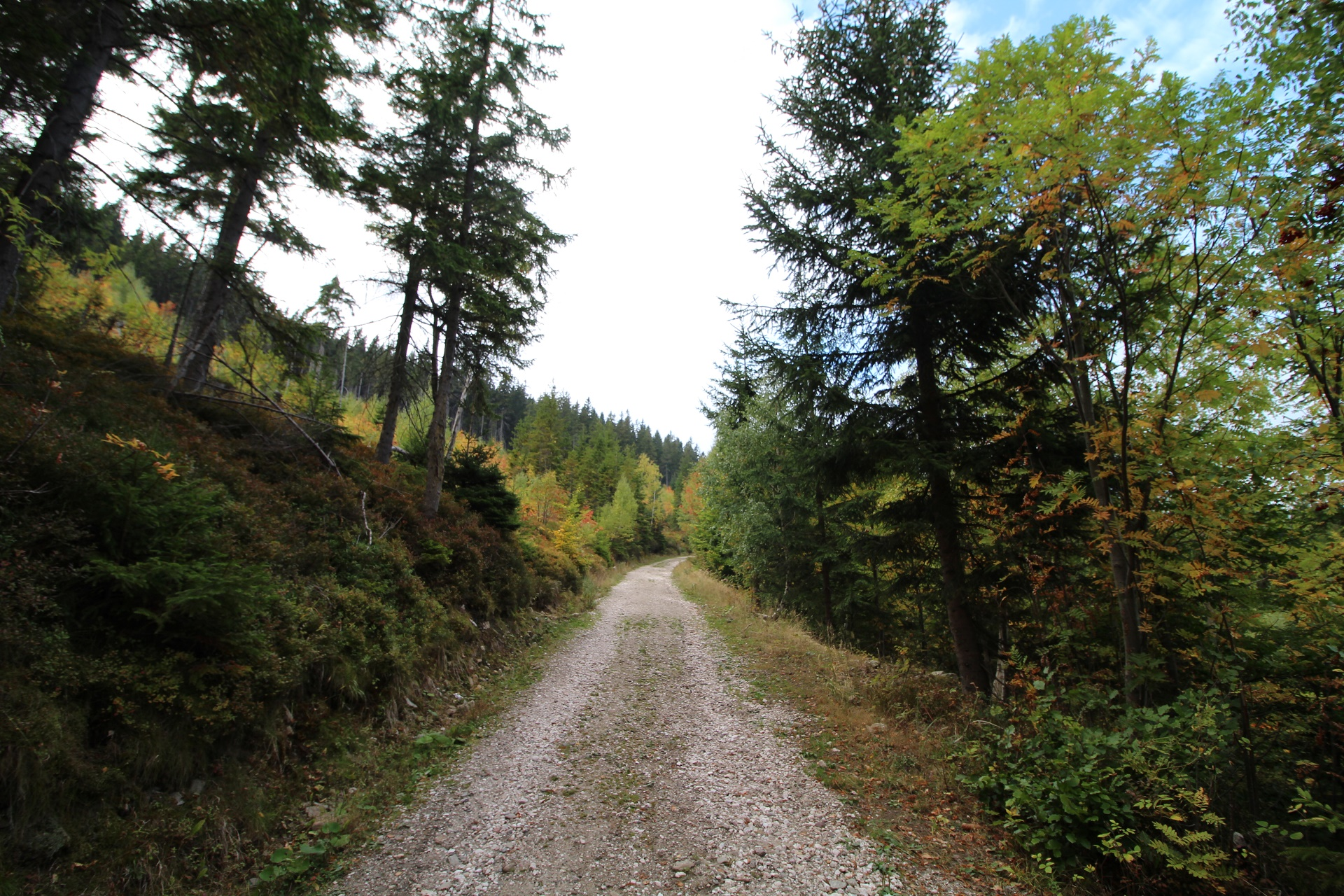 Turisticka trasa z Janskych Lazni
