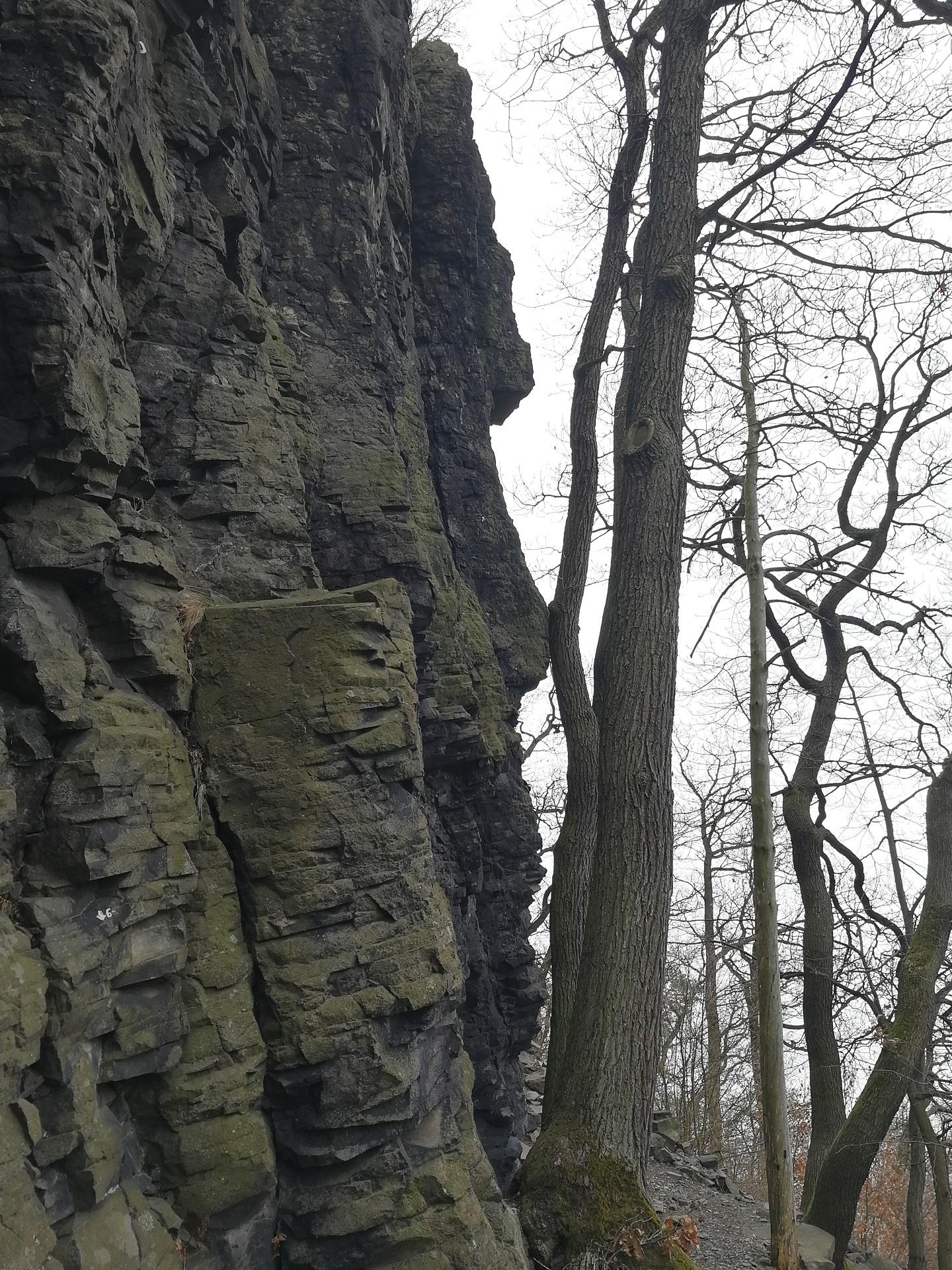 Detailní pohled na vyvřelinu skály Kreutzberg v lese