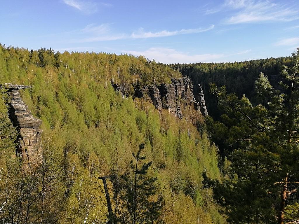 Pohled do údolí Dürre Biele s lesy a pískovcovými věžemi