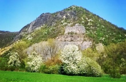 Kozí vrch