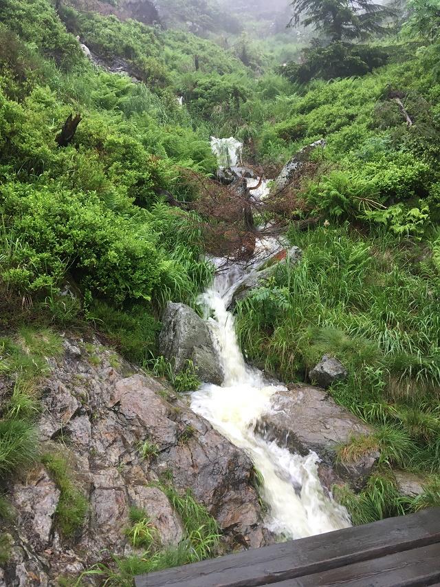 Potok k Tetřevímu vodopádu