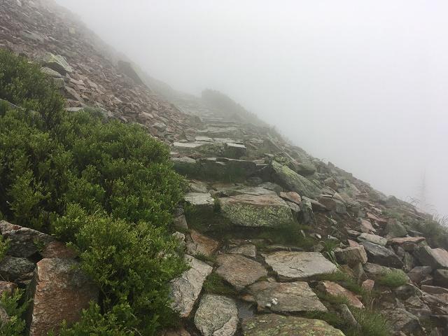 Cesta ke Kozím hřbetům